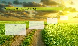 Ecosystems  Mrs. Campbell Grade 5