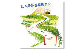 3. 식물을 분류해 보자