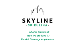 Skylines Spirulina Food & Beverage application