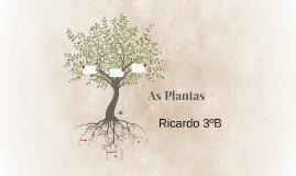 As plantas.