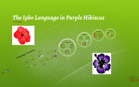Igbo Language In Purple Hibiscus By Name Why On Prezi