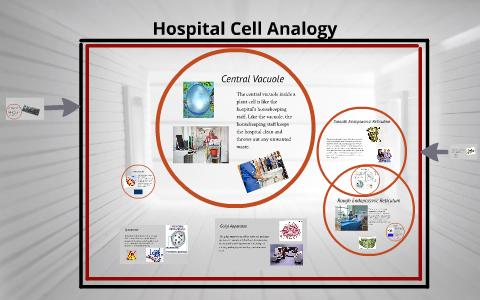 eukaryotic cell analogy
