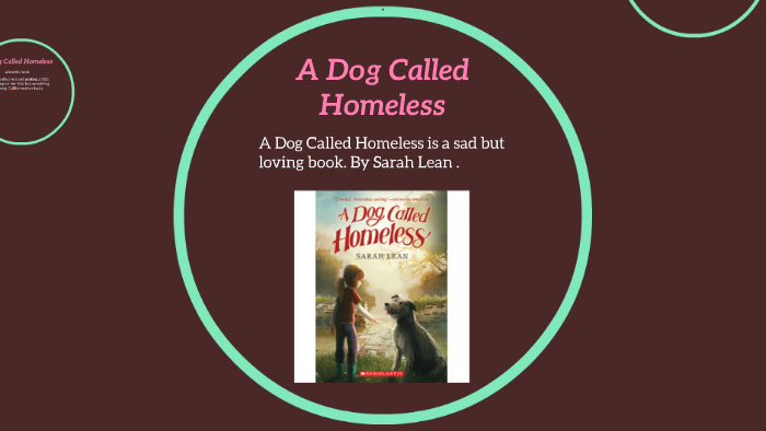 A Dog Called Homeless By Erin Jeffery On Prezi