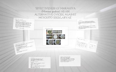 EFFECTIVENESS OF MAKAHIYA (Mimosa pudica) AS AN ALTERNATIVE