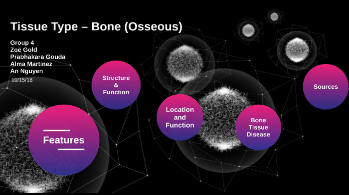 G4 Issues with Tissues - Bone by Group 4 on Prezi Next