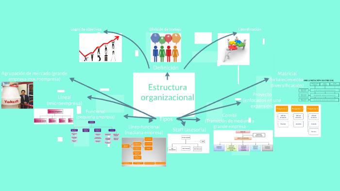 Mapa Mental Estructuras Organizacionales By Jahmekya Alberdi