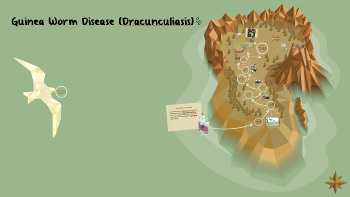 Dracunculiasis : Road to Eradicatiom by Arianne Bernardez on