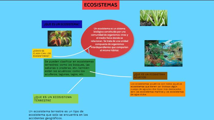 Ecositemas By Jorge Elias Torres Paz