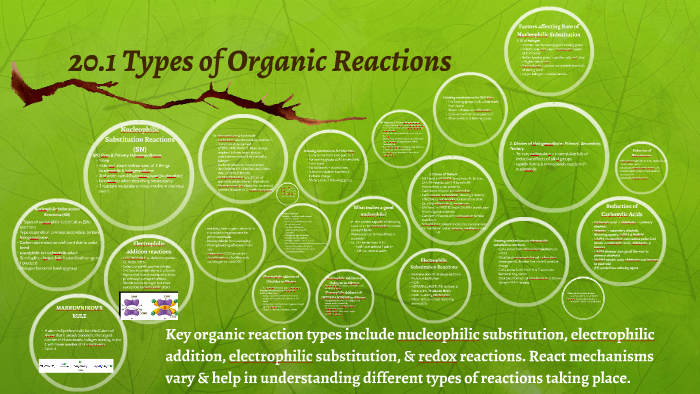 20 1 Types of Organic Reactions by Erin Perry on Prezi