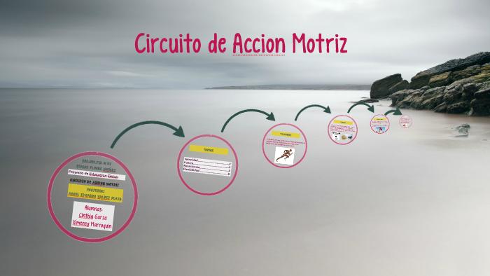 Circuito De Accion Motriz : Circuito de accion motriz by ramon on prezi