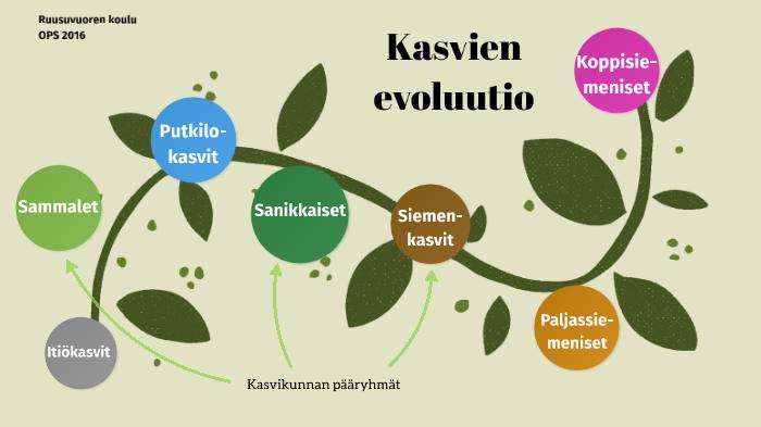 Kasvien Evoluutio