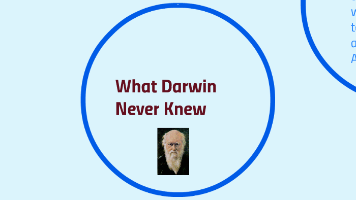 also What Darwin Never Knew Worksheet Answer Key  What Darwin Never Knew besides What Darwin Never Knew Worksheet Answer Key  What Darwin Never Knew together with What Darwin Never Knew Video Worksheet   The Best and Most likewise  besides  moreover Evolution By Natural Selection Worksheet   Oaklandeffect additionally NOVA  What Darwin Never Knew   KPBS in addition  likewise  as well What Darwin Never Knew Worksheet 42 Fresh Vestigial Structures together with What Darwin Never Knew Worksheet   Wel e to Senior Biology Pages as well What Darwin Never Knew Video Worksheet What Darwin Never Knew Video in addition What Darwin Never Knew by Melissa Hurt on Prezi moreover Sbi3U Test Review Sheet  Ge ic Unit   Kci Sbi3U   FREE Printable as well What Darwin Never Knew Video Questions   Charles Darwin   Gene. on what darwin never knew worksheet