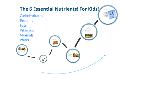 6 Essential Nutrients For Kids By Linsey Allen
