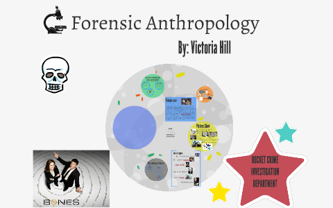 Rocket Crime Investigation Department By Victoria Hill On Prezi Next