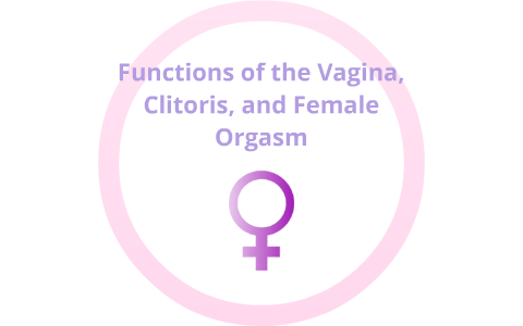 The vagina of Functions