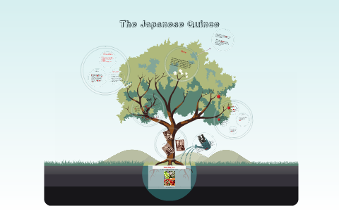 the japanese quince summary