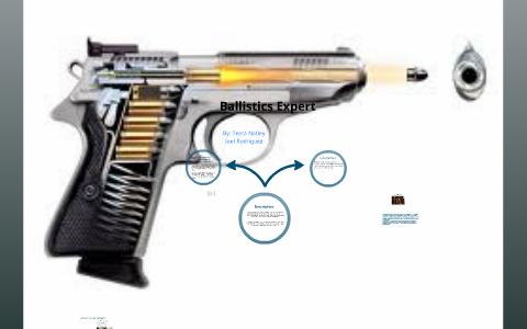 Ballistics Expert By Joel Rodriguez