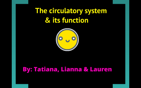 The Circulatory System And Its Function by Lauren Lanford on