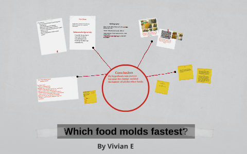 which cheese molds the fastest
