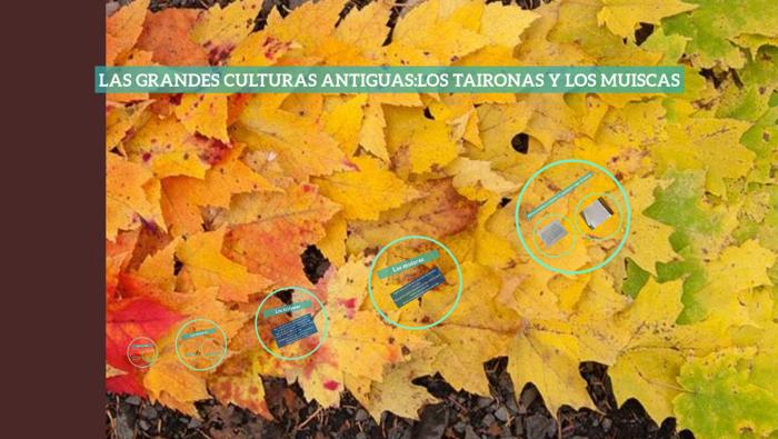 Las Grandes Culturas Antiguas Los Taironas Y Los Muiscas By