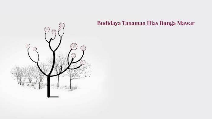 Budidaya Tanaman Hias Bunga Mawar By Irwan Fadillah