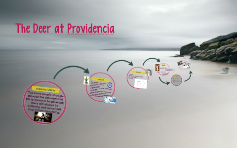 the deer at providencia theme