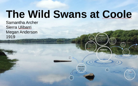 wild swans at coole critical analysis