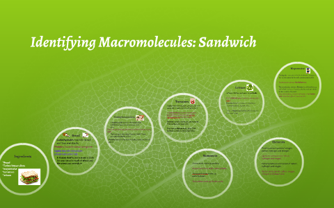 identifying macromolecules