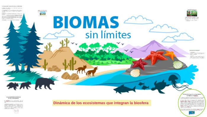 Dinámica De Los Ecosistemas Que Integran La Biosfera By