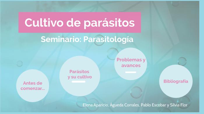 parásitos tiene ciclo monoxénico