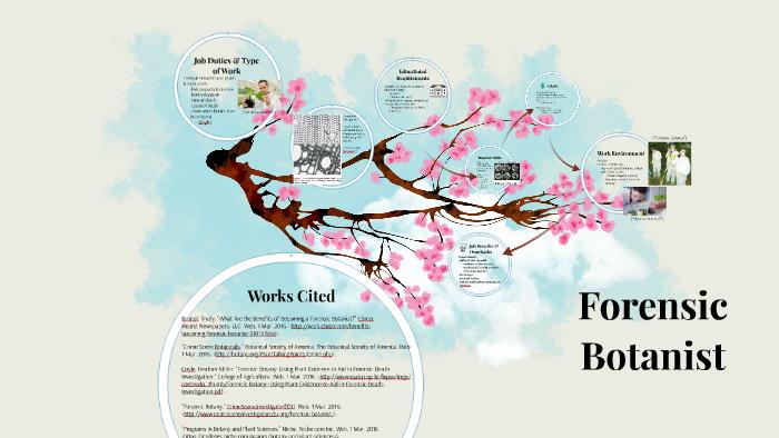 Forensic Botanist By Melica Nikahd On Prezi Next
