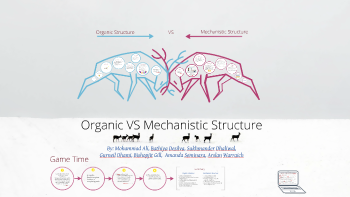 mechanistic and organic structure