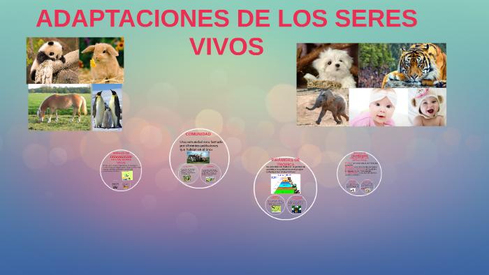 Adaptaciones De Los Seres Vivos By Camila Ultengo On Prezi Next