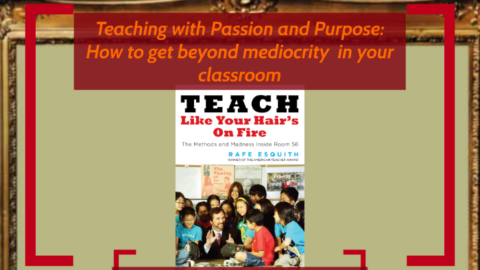 teach like your hairs on fire the methods and madness inside room 56