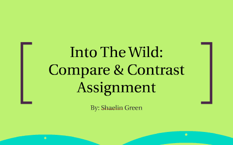 differences between into the wild and wild