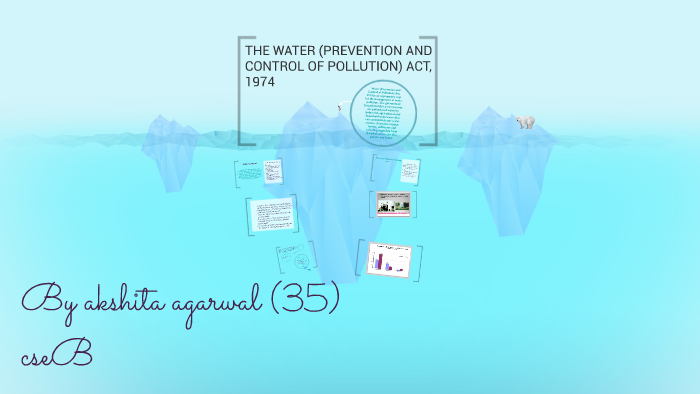 the water prevention and control of pollution act