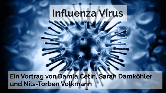 ansteckung influenza