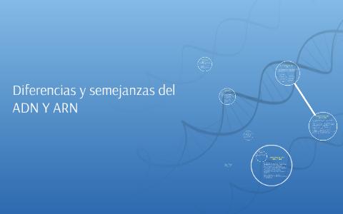 Diferencias Y Semejanzas Del Adn Y Arn By Diego Alejandro