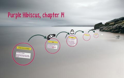Purple Hibiscus Chapter 14 By Saul Padilla On Prezi