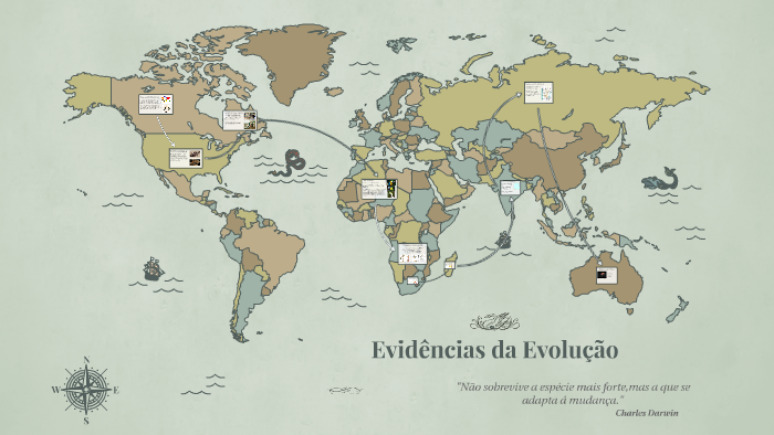 Evidências Da Evolução By Gabriel Klopper On Prezi