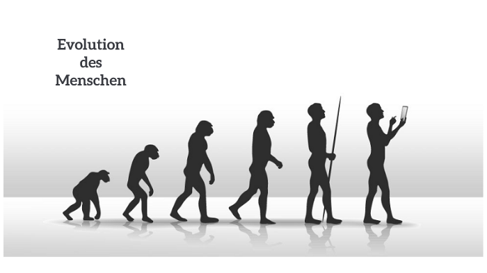 Evolution Mensch