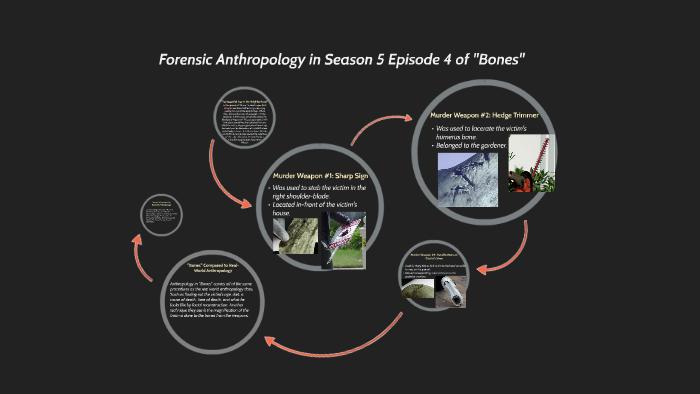 "Forensic Anthropology in Season 5 Episode 4 of """