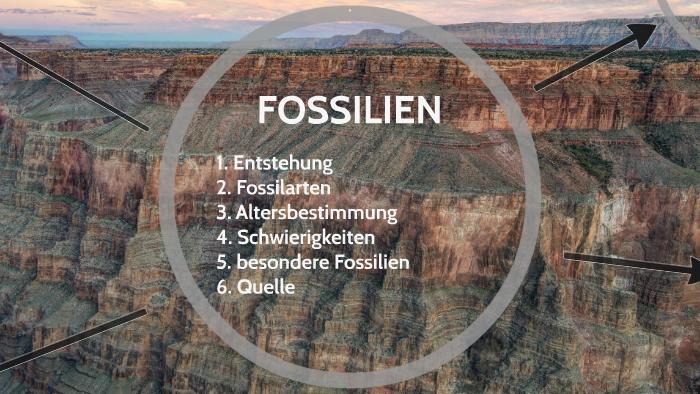 Welche Vermutung wird während der relativen Datierung von Fossilien gemacht