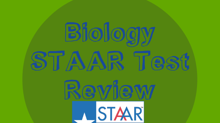 Biology STAAR Review Reporting Category 1 by Donna Sue ...