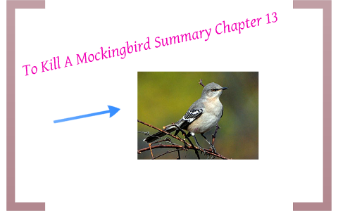 chapter 13 tkam summary
