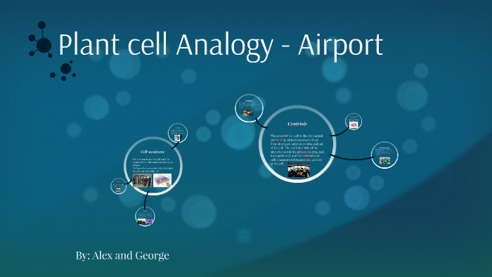 Cell Analogy Airport By Arun Grewal On Prezi