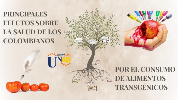 POR EL CONSUMO DE ALIMENTOS TRANSGÉNICOS by on Prezi
