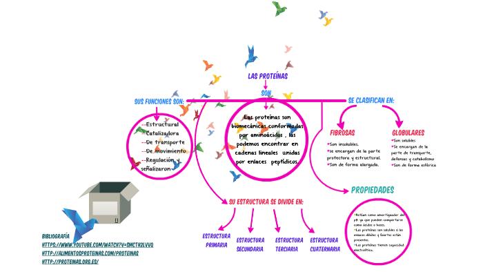 Son Biomoleculas Conformadas Por Aminoacidos Las Podemos E