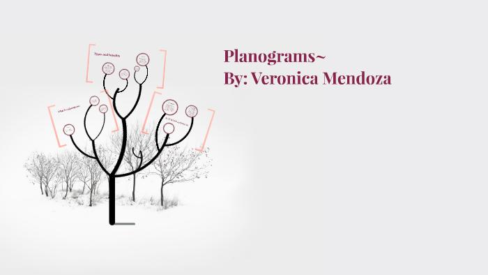 What is a planogram? by Veronica Mendoza on Prezi