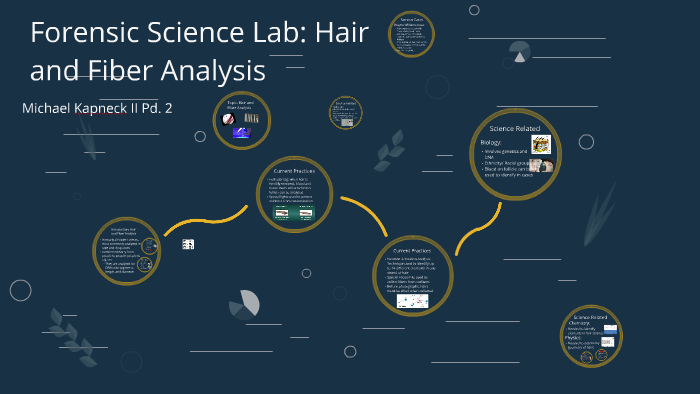 Forensic Science Lab Hair And Fiber Analysis By Michael Kapneck Ii